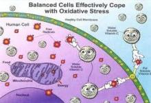 Posibles marcadores periféricos de estrés oxidativo e inflamación en pacientes con retinosis pigmentaria