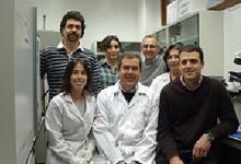 Investigadores de la Universidad de Granada estudian la incidencia de células del sistema nervioso en la degeneración de la retina